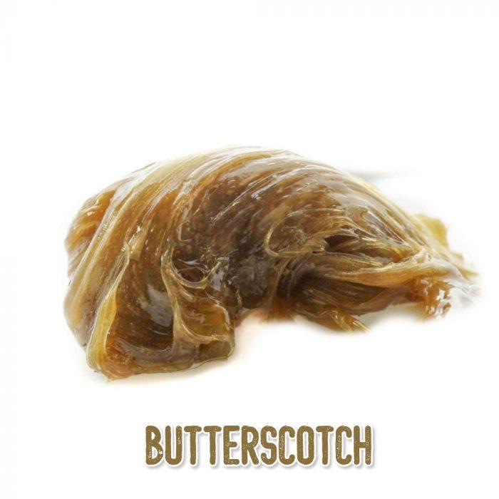 butterscotch rosin