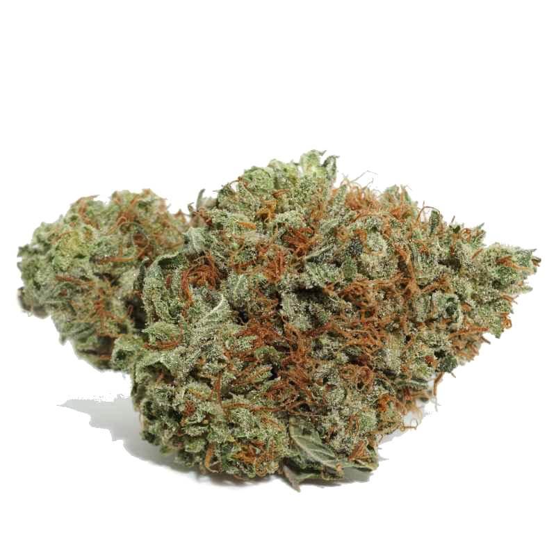 strawberry-cough-strain