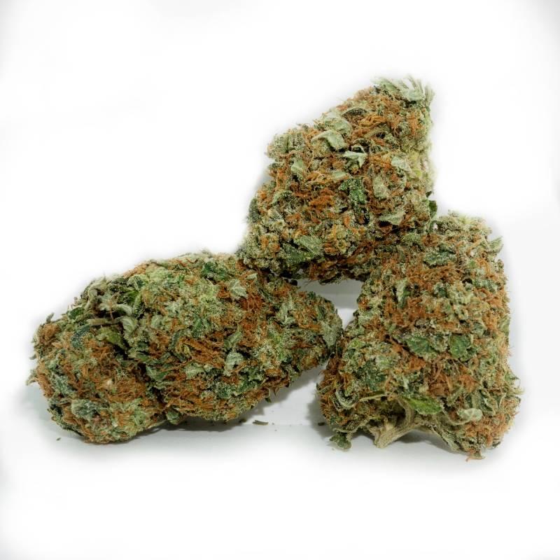 Tahoe OG | Buy Tahoe OG Cannabis Strain in Canada