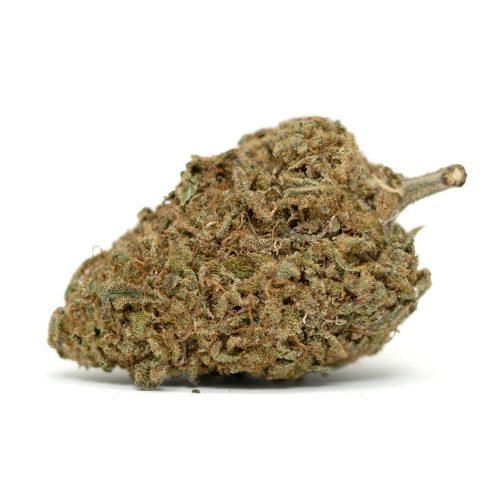 Afghan-Kush | Buy Afghan Kush Cannabis Strain