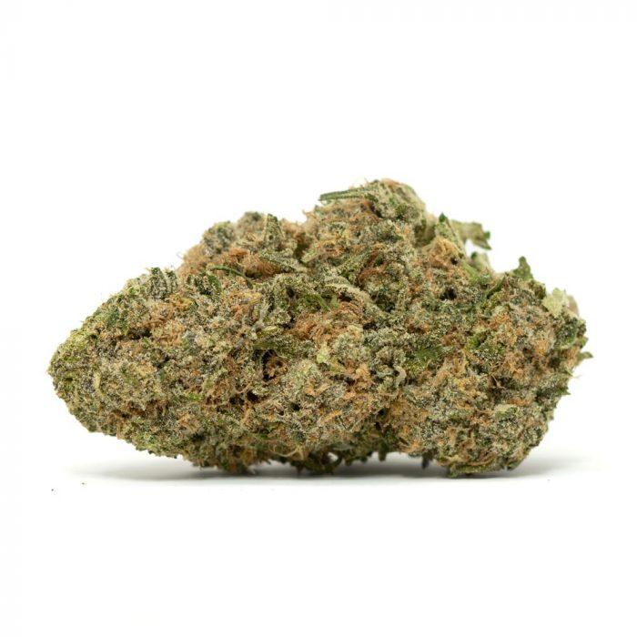 Blue Magoo   Buy Blue Magoo Cannabis Strain