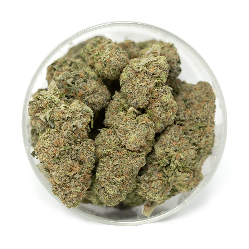 Bulk Blue Magoo Weed