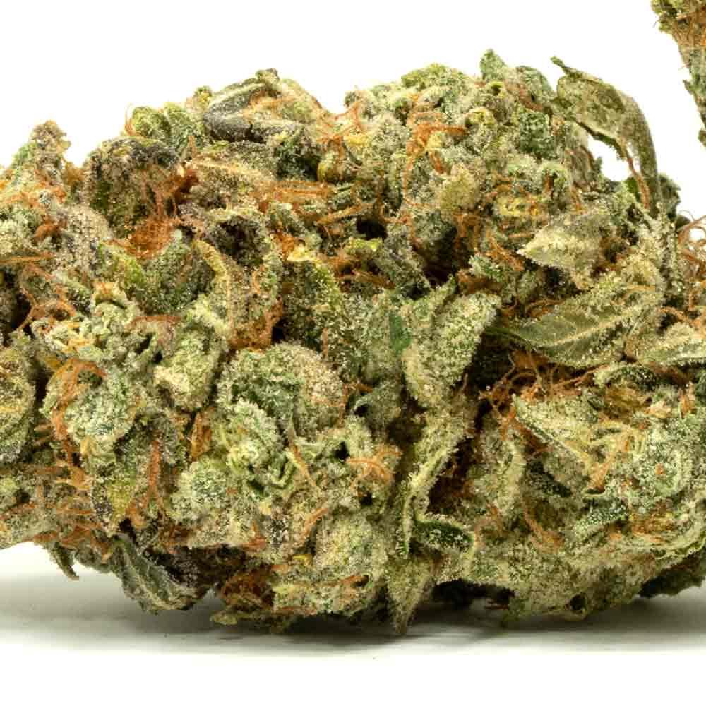 Cotton-Candy-Marijuana-Strain