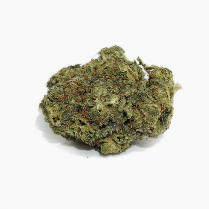 MOBY-DICK-STRAIN