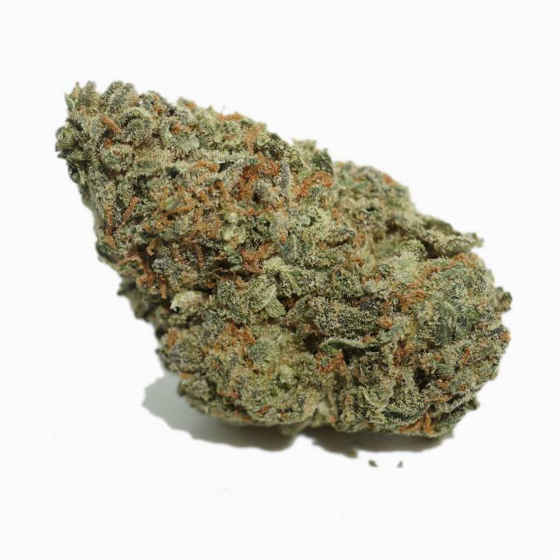 buy lemon pie weed online