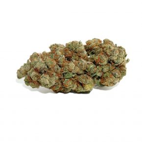Cheesecake Strain | Purchase Canadian Marijuana Online