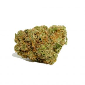 Durban Poison Strain | Purchase Cannabis Online Canada
