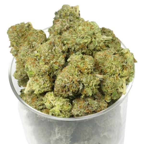 Bulk Pink Man Goo Marijuana Buds
