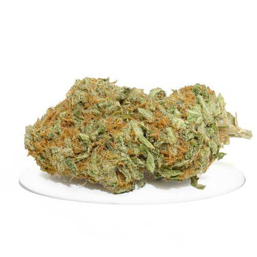 Comatose Strain | Buy Cannabis Online in Canada