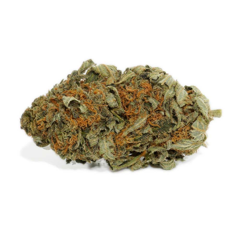 Master Kush Strain | Shop High Quality Marijuana Canada