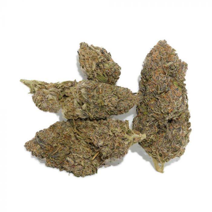 Slurricane Marijuana Buds