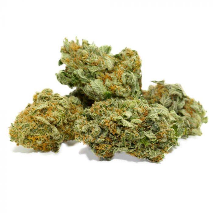 Jack Frost strain marijuana buds