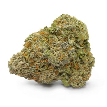 Skookum Charlie | Buy Skookum Charlie Cannabis Strain at Weed-Deals