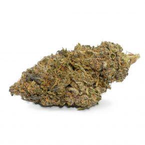 Slurricane Strain | Shop Quality Cannabis Canada