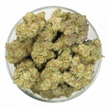 Buy-Orange-Creamsicle-Weed