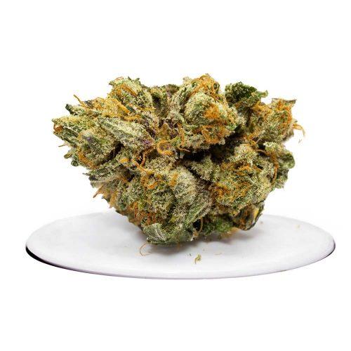 Juicy Fruit Strain | Buy Juicy fruit weed online