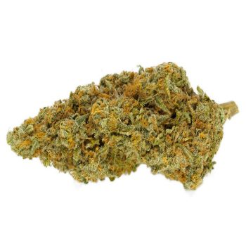 Super-Lemon-Haze | Buy cannabis online at best canadian dispensary
