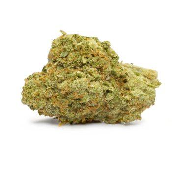White Castle Marijuana Strain
