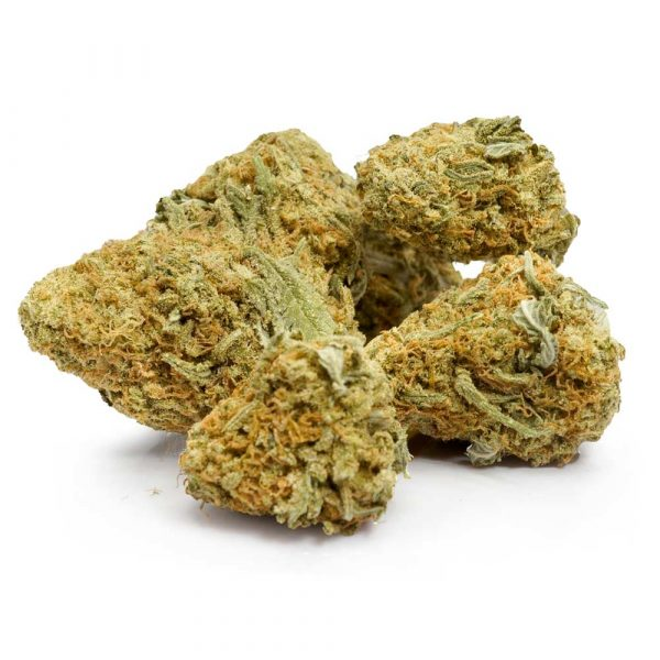 Buy-Bulk-Orange-Crush-Weed