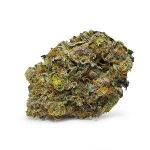 Critical-Mass   Purchase Marijuana Online
