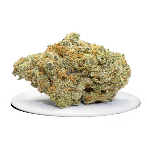 hawaiian snow strain | Buy Hawaiian Snow