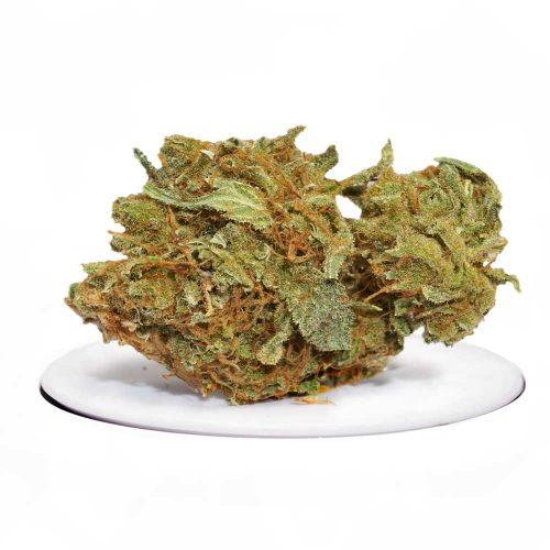 Sour-Diesel | Buy Cannabis Online in Canada
