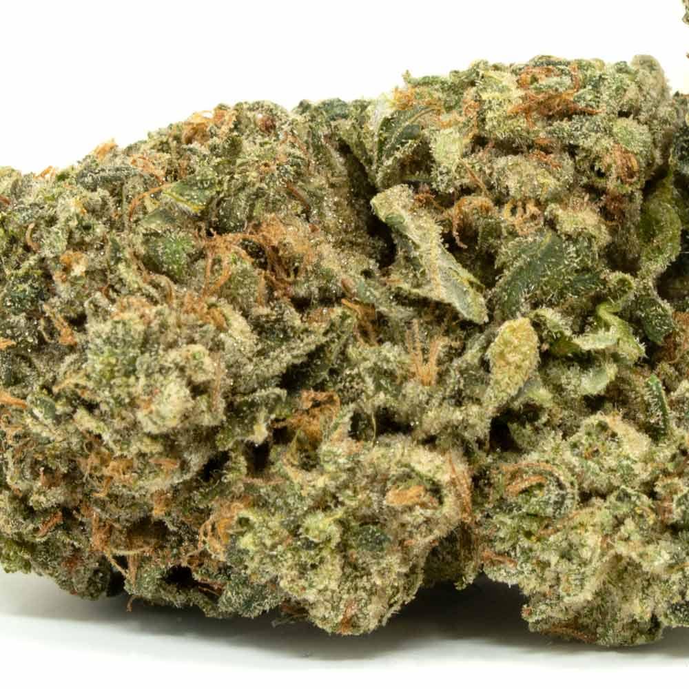 romulan-cannabis-bud