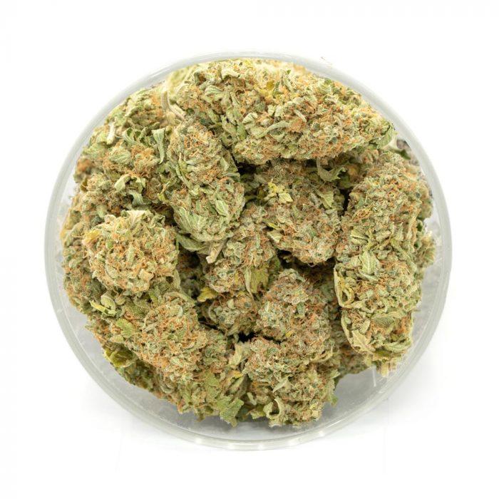 Headband-Marijuana-Buds