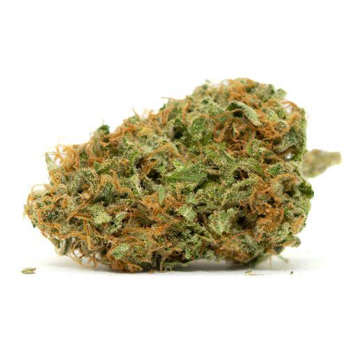 Headband Strain | Buy Headband Marijuana Strain