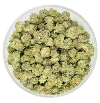 Popcorn Buds Pine Tar