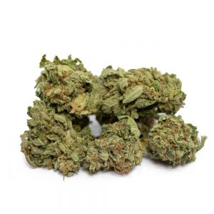 Cheap Popcorn Marijuana Buds
