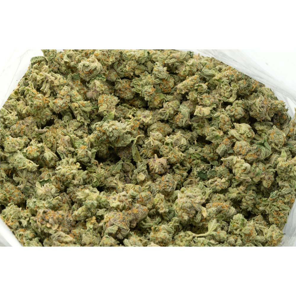 Hammershark-strain-popcorn-buds