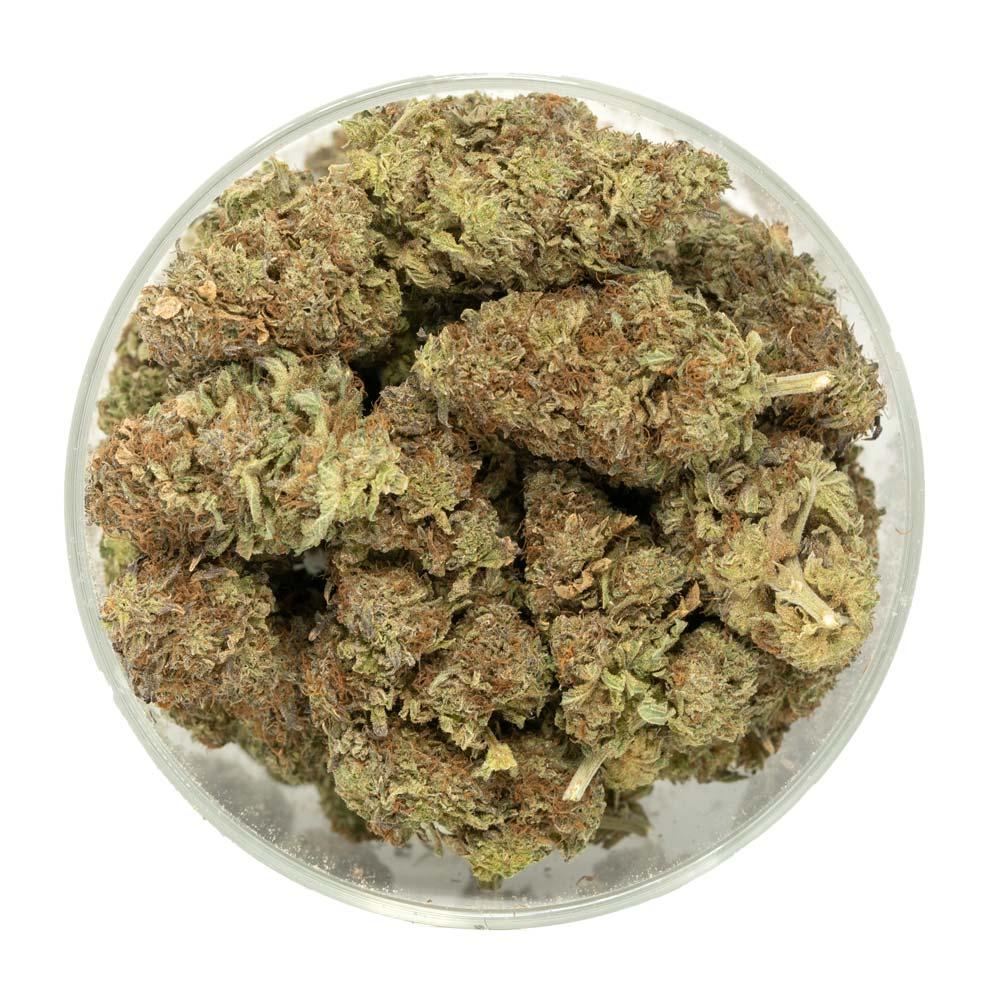 Grand-Daddy-Purple-Marijuana-Buds