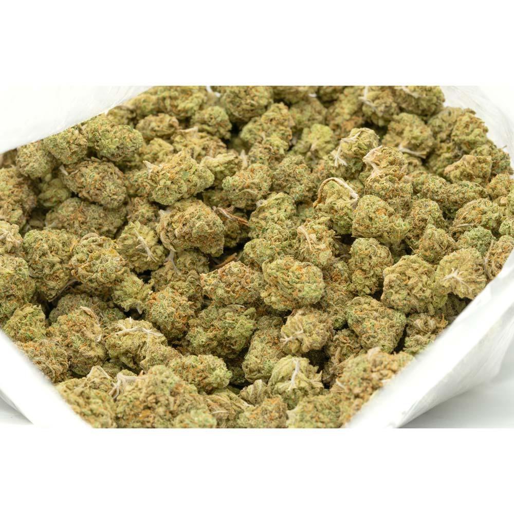 Lemon-Jack-Weed
