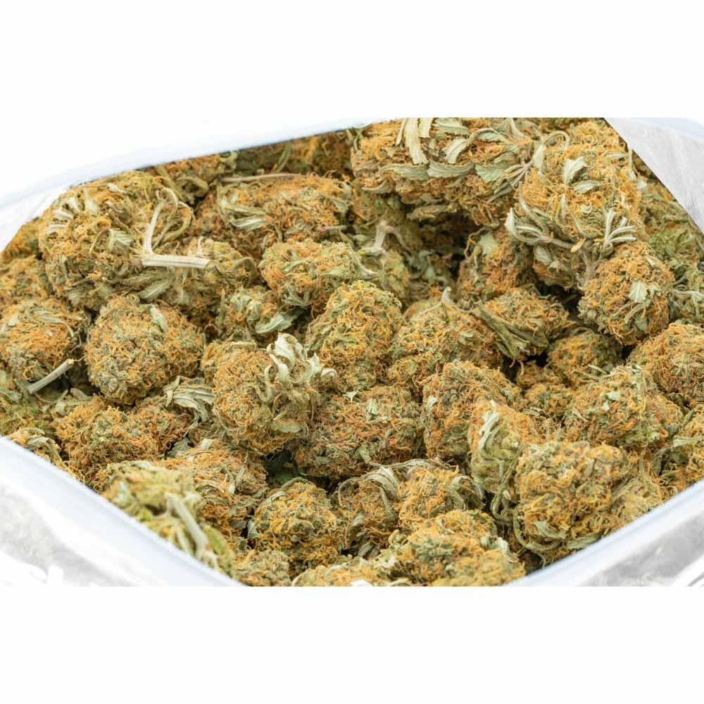 tangerine-sunrise-marijuana-buds