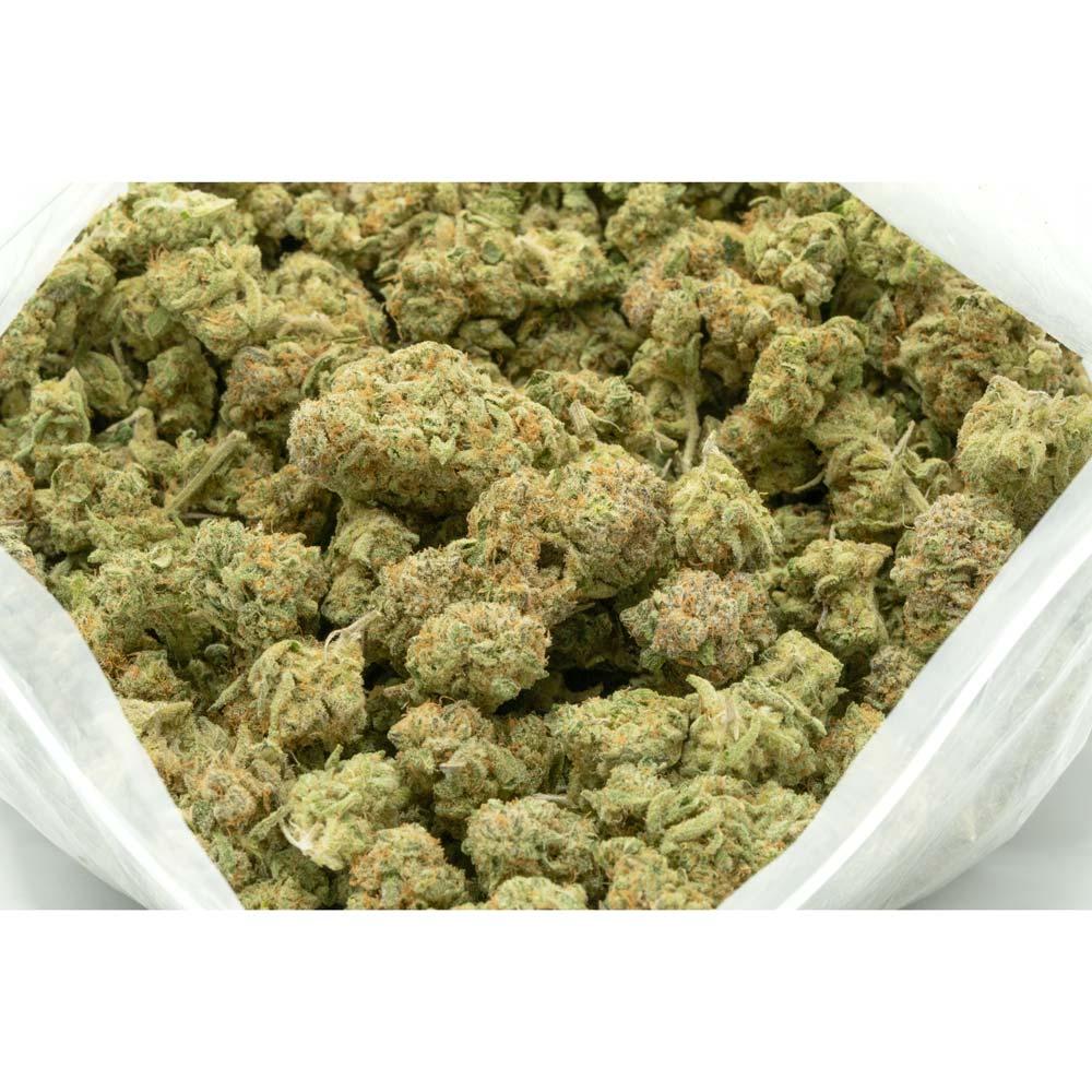 Zombie Kush Weed