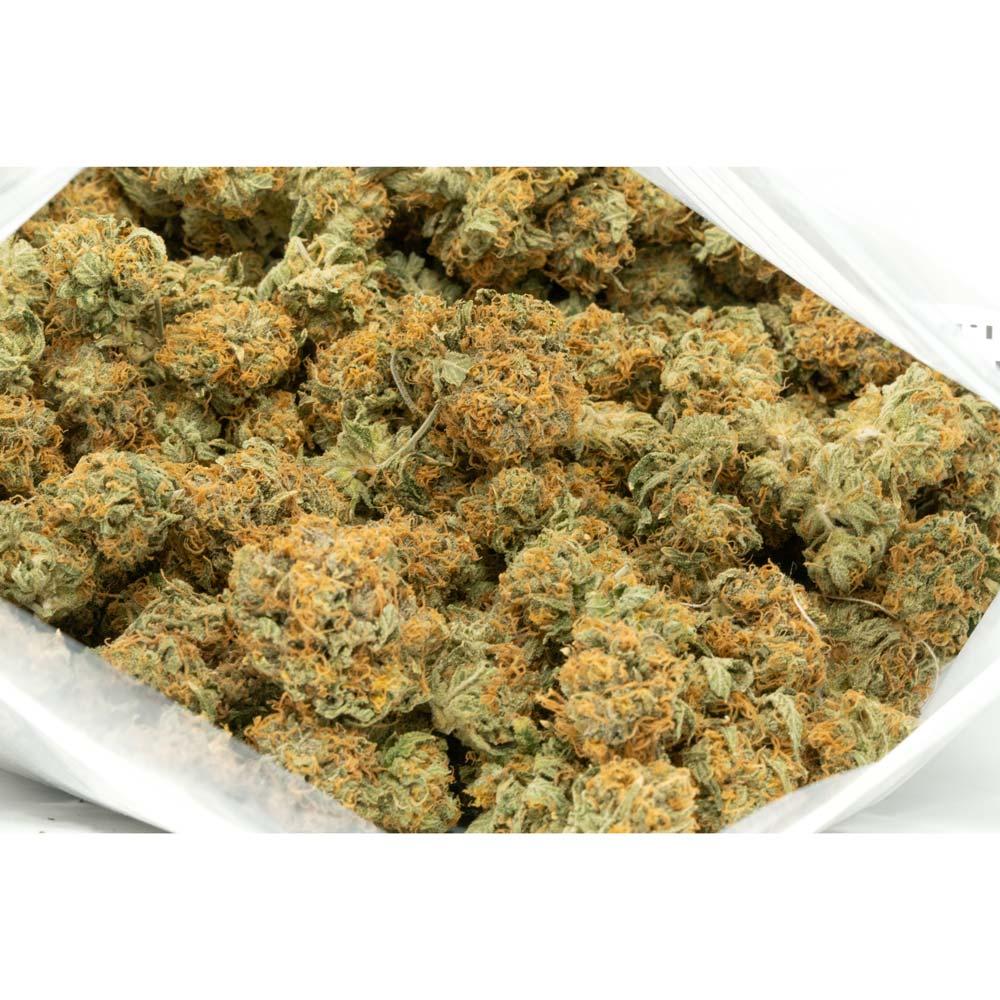 Jet-Fuel-Weed-Strain