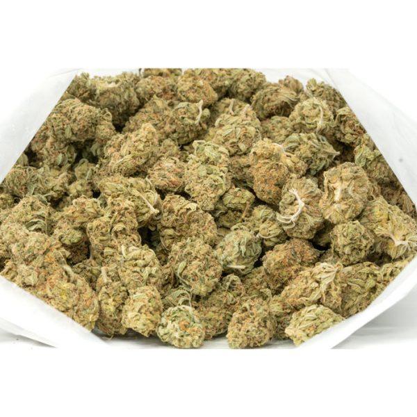 Black-Cherry-Marijuana-Buds