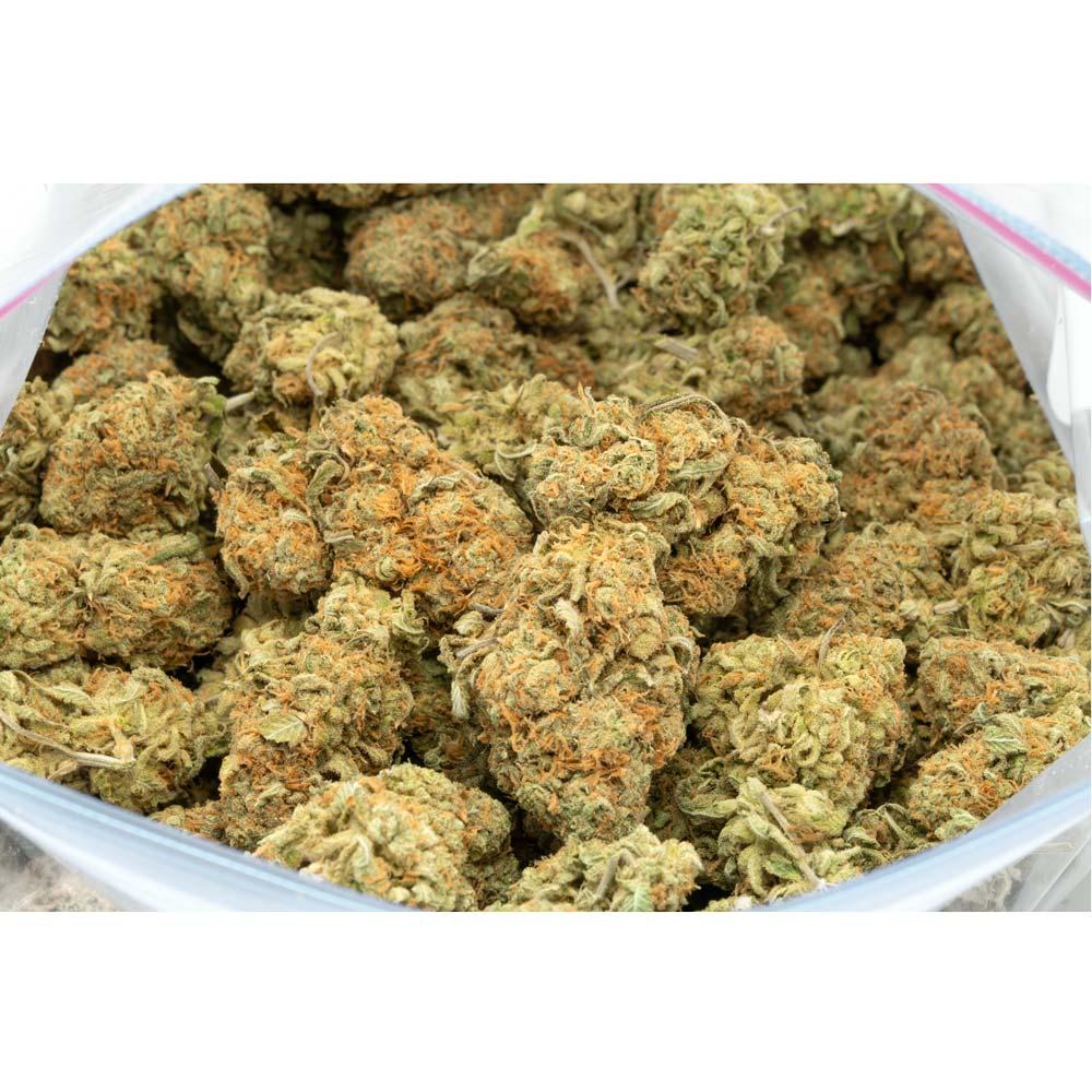 Buddha-Haze-Marijuana-Buds