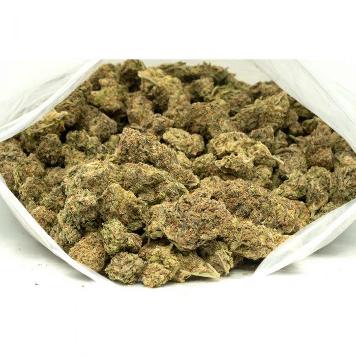 Gelato-33-Marijuana-Buds