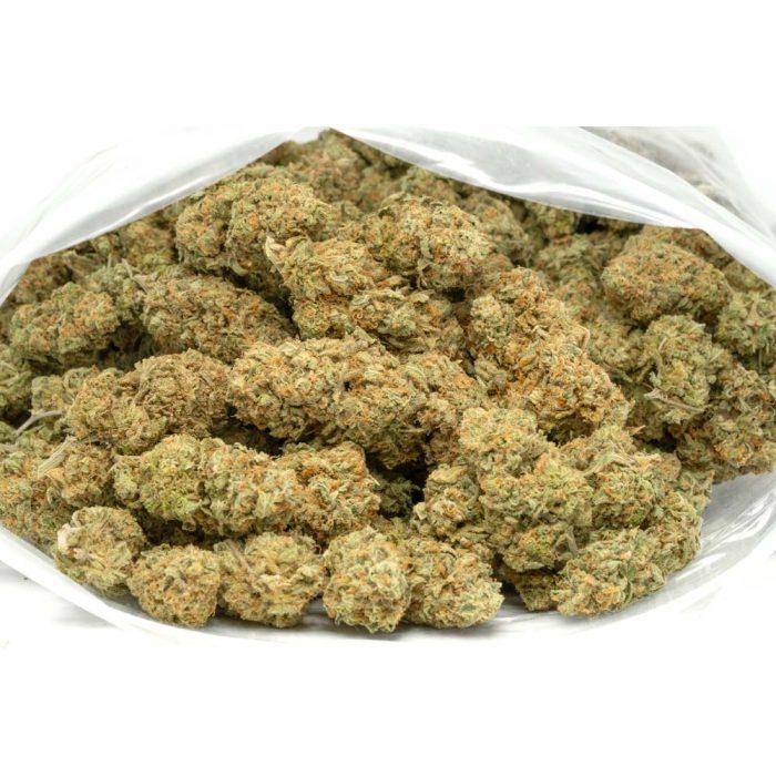 Orange-Crush-Marijuana-Buds
