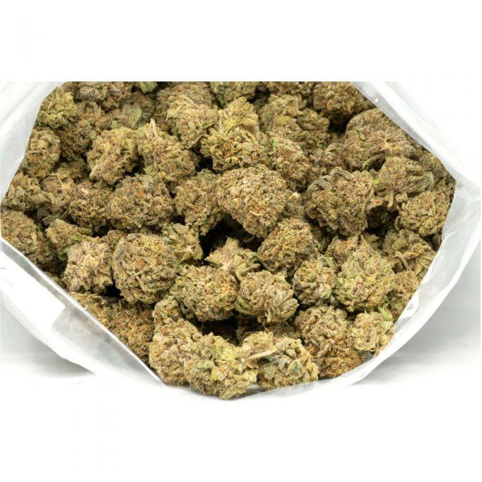Purple-Trainwreck-Marijuana-Buds