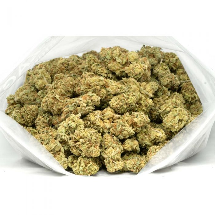 Violator-Marijuana-Buds