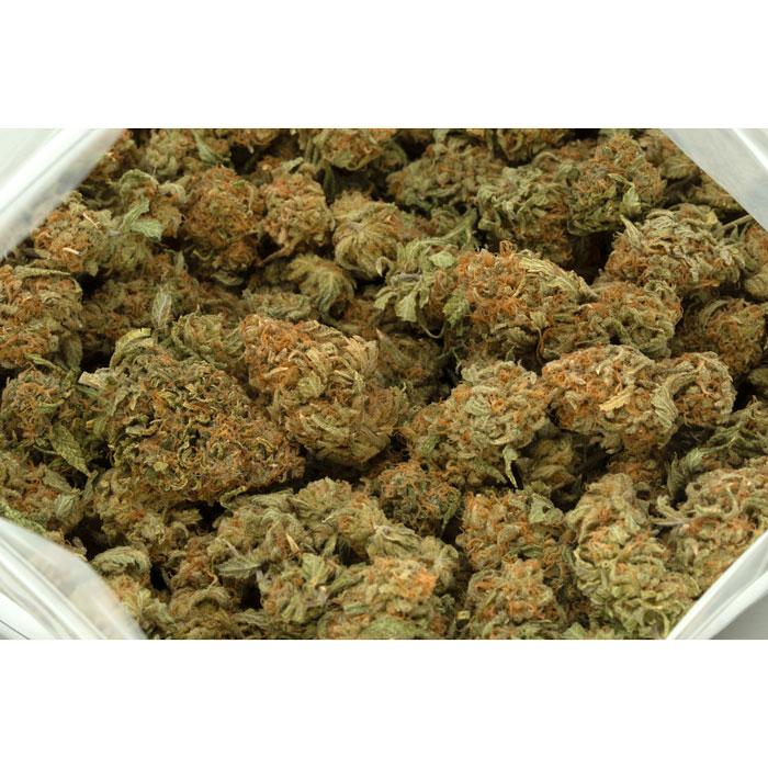 Lemon-Cake-Marijuana-Buds-1